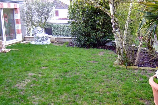 jardin gazon